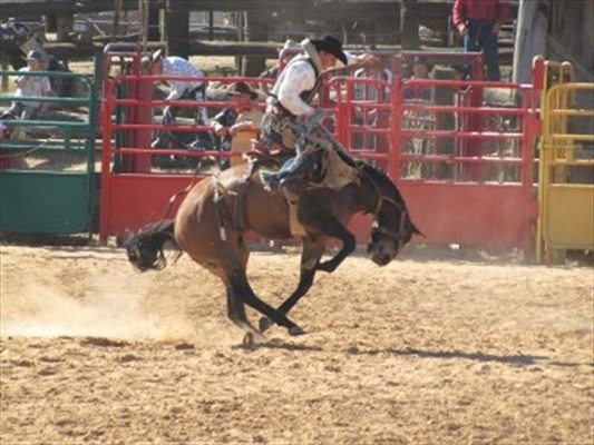 Events - Rodeo 1